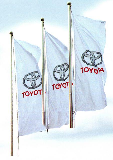 drapeau publicitaire - bannières sur mât avec drisse